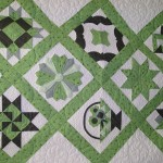 Here's Marcia's sampler quilt from this Spring's Beg. Quilting II class.  It was beautiful before - but not that it's quilted, WOW!!! Love it!