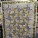 Barb Brown found just the right fabric to finish this quilt top!