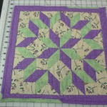 How cute is this Carpenter Star Doll Quilt - made by Tonia Schneider?