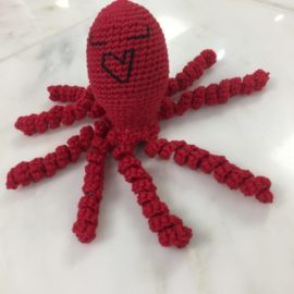 Octopus for a Preemie Workshop – Sept. 23rd